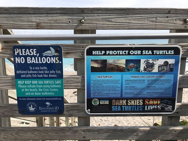 Balloon Sea Turtle Signs