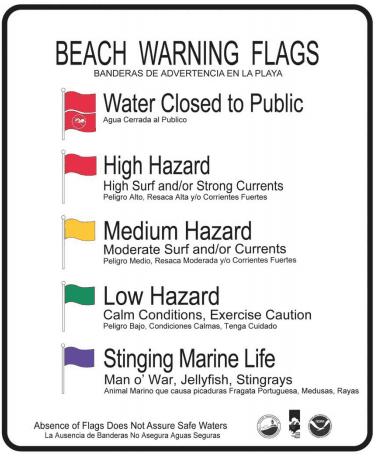 beach flag picture