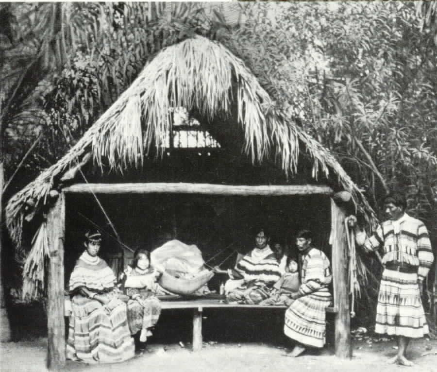 Seminole hut