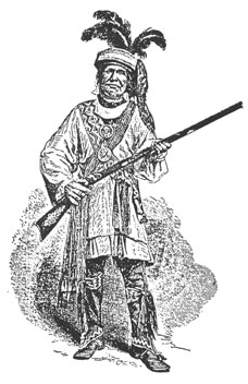 Seminole Chief